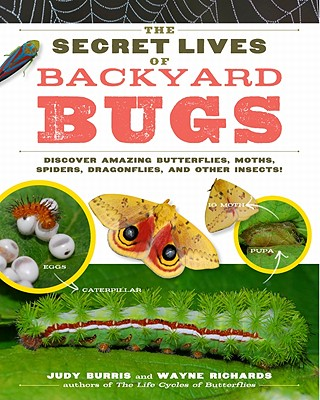 The Secret Lives of Backyard Bugs By Burris, Judy/ Richards, Wayne